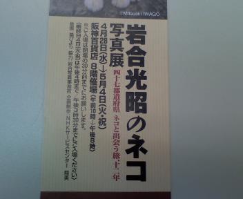 P2010_0421_115348.JPG